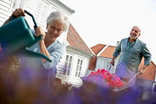 Tips For The DIY Landscaper