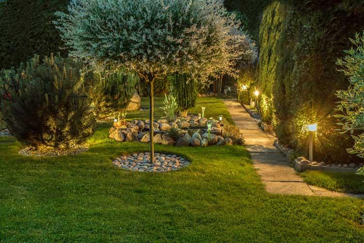 Lighting-garden-lit-walkway-with-stones-image