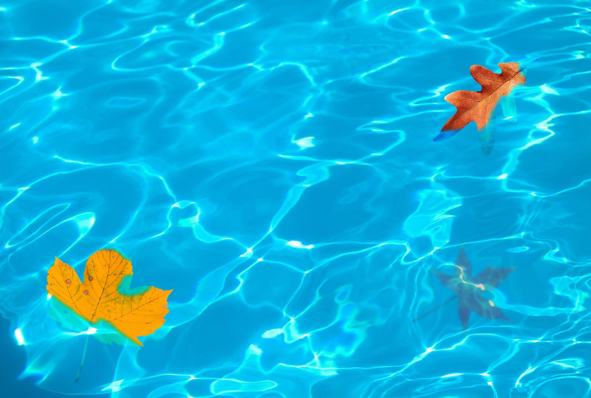 Maryland-Inground-Pools-thankful-for-inground-pool-woodfield-outdoors