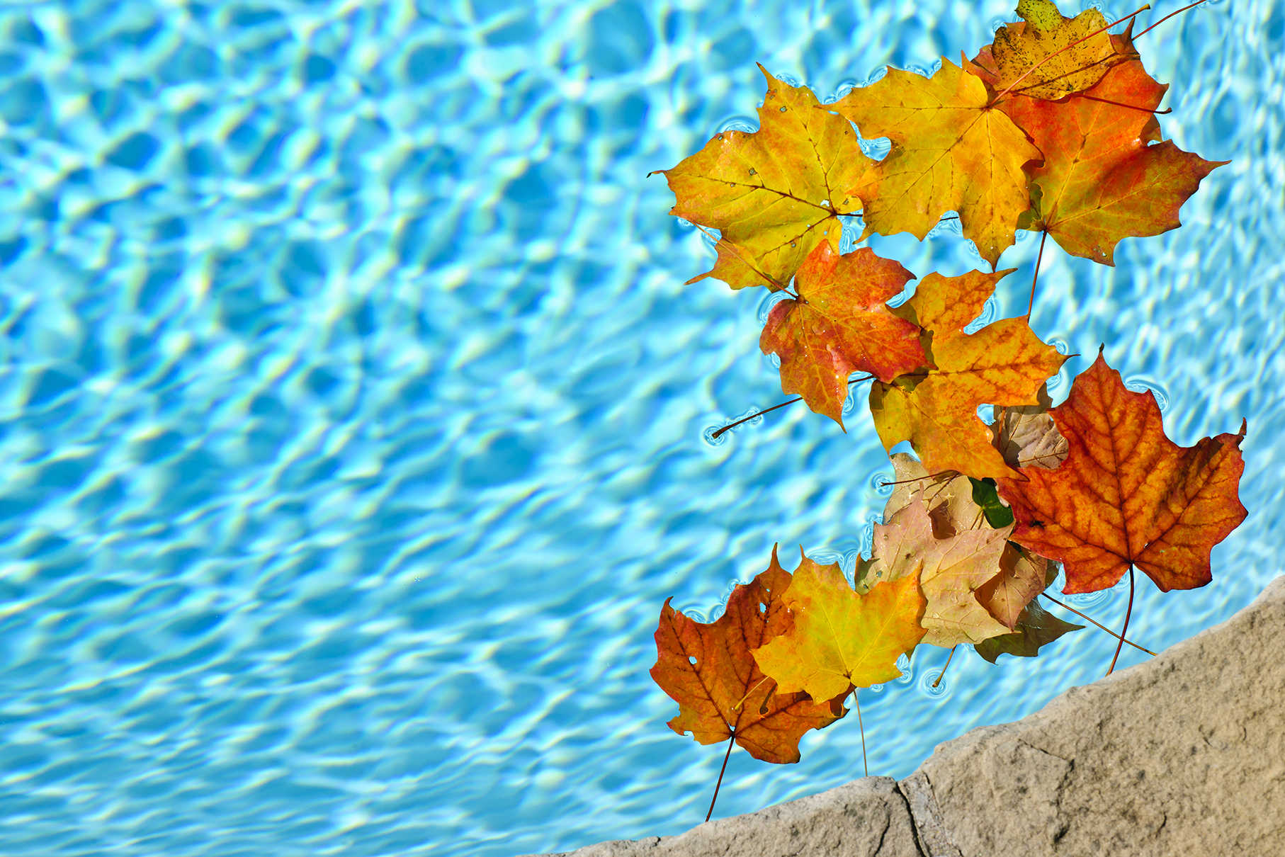 Best-time-for-fall-pool-installation